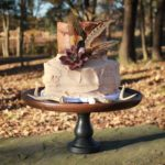 Fall Boho Chic Cake with Succulent and Feathers